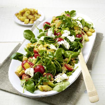 brunnenkresse-linsen-salat